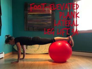front-elevated-plank-lateral-leg-lift-3a
