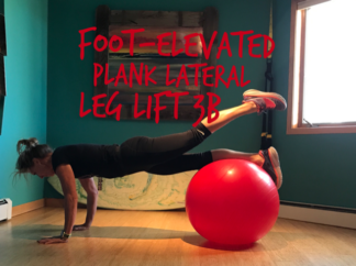 front-elevated-plank-lateral-leg-lift-3b